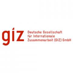 Deutsche Gesellschaft für Internationale Zusammena